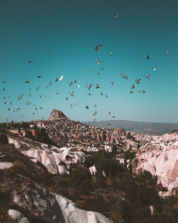 Flock Of Birds Above A Mountain