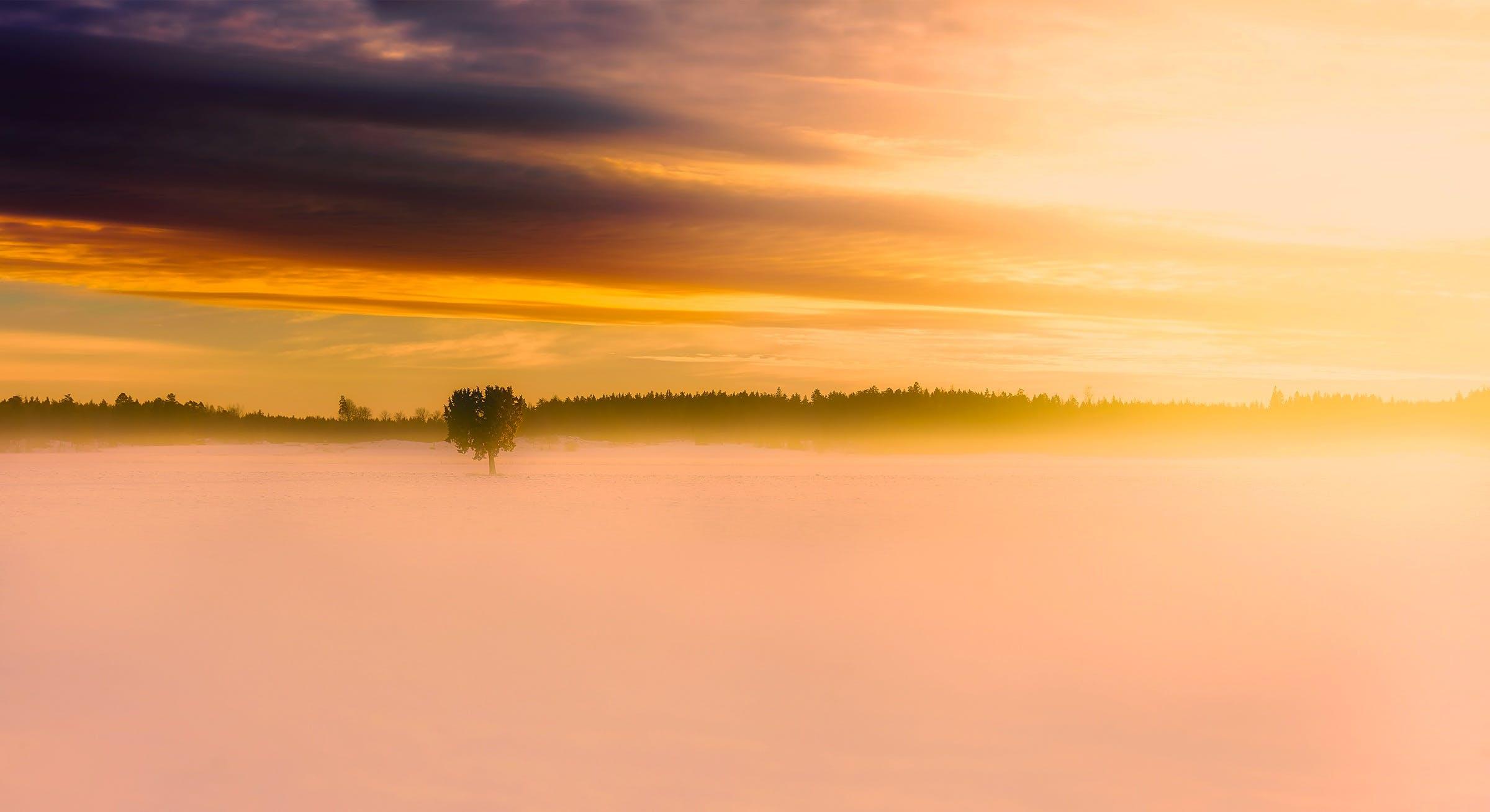 Free stock photo of snow, dawn, landscape, nature