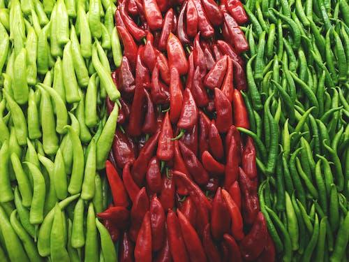 Ilmainen kuvapankkikuva tunnisteilla chilipippurit, Chilit, erä, hedelmä