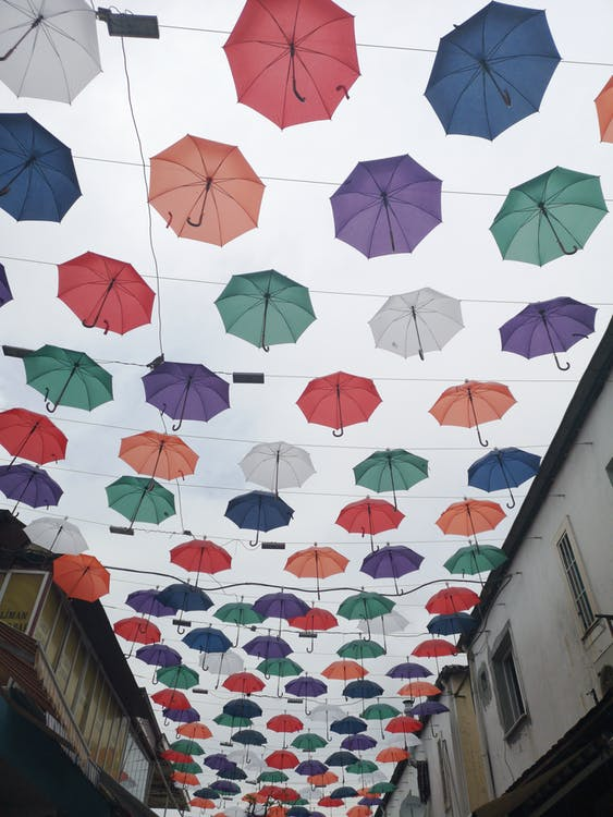 dáždnik, dáždniky, dekor