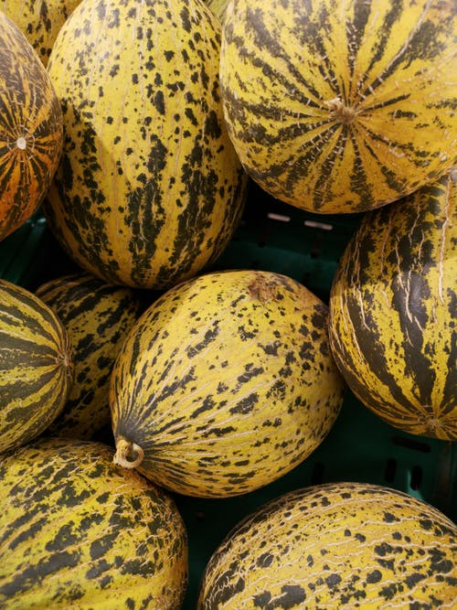 Fotos de stock gratuitas de agricultura, amarillo, comida, cosecha