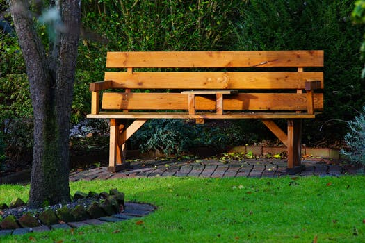 Free stock photo of wood, bench, landscape, romantic