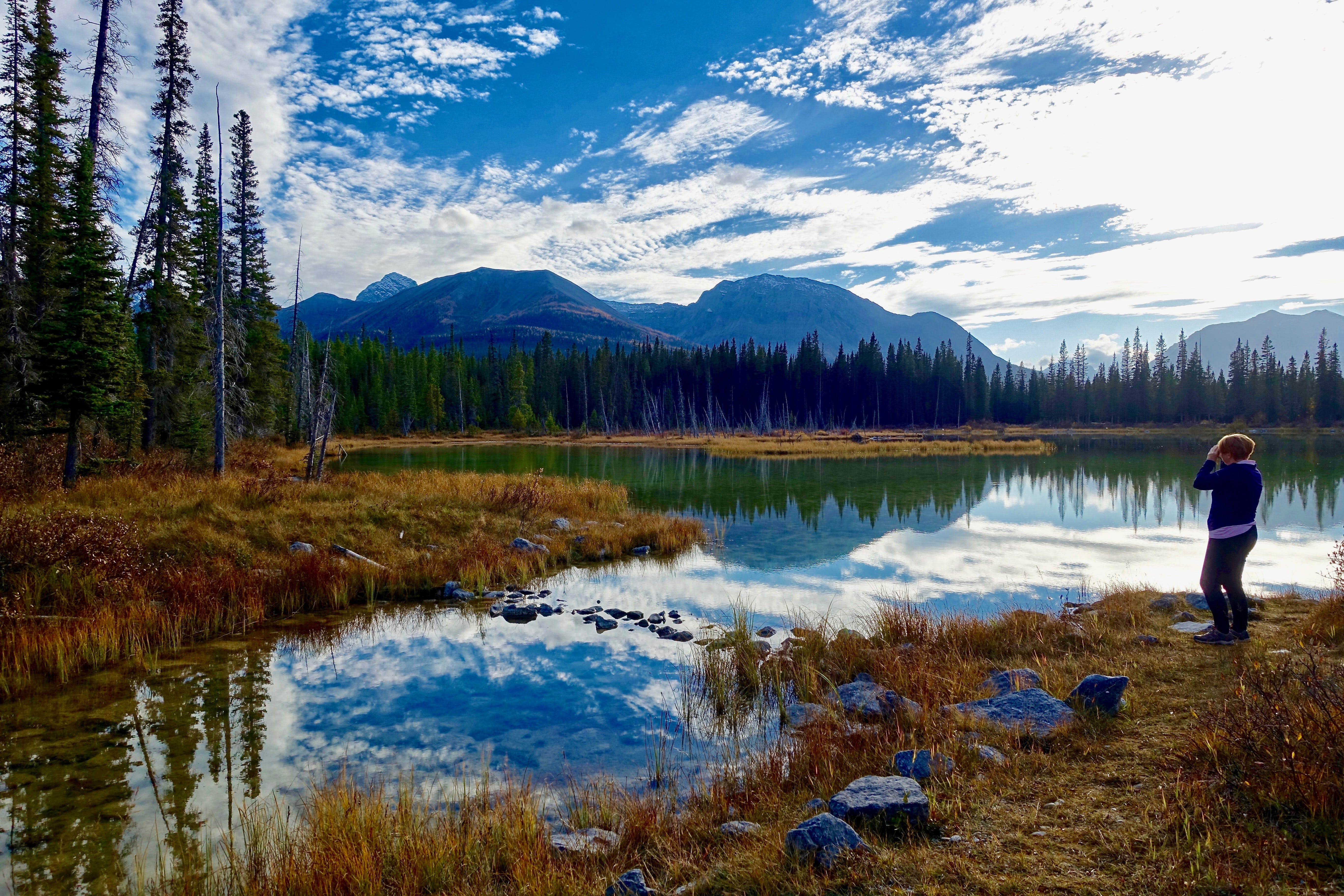 Kostenloses Stock Foto zu bäume, berg, friedlich, friedvoll