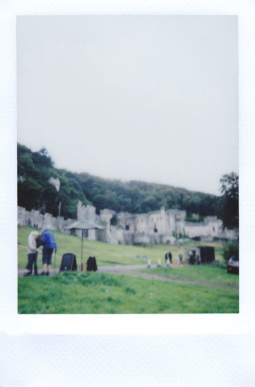 Бесплатное стоковое фото с polaroid, деревья, дневной свет, дом
