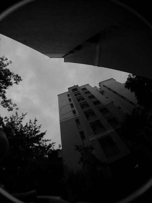 Foto d'estoc gratuïta de a l'aire lliure, arbre, arquitectura, cel