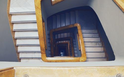 Безкоштовне стокове фото на тему «гвинтові сходи, коло, равлик, спіраль»