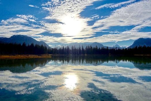 Free stock photo of wood, light, dawn, landscape