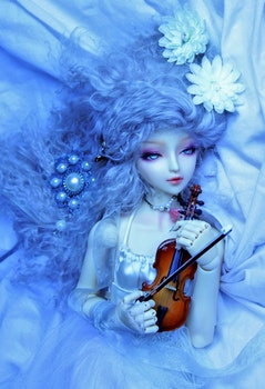 Free stock photo of blue, white, flower, violin