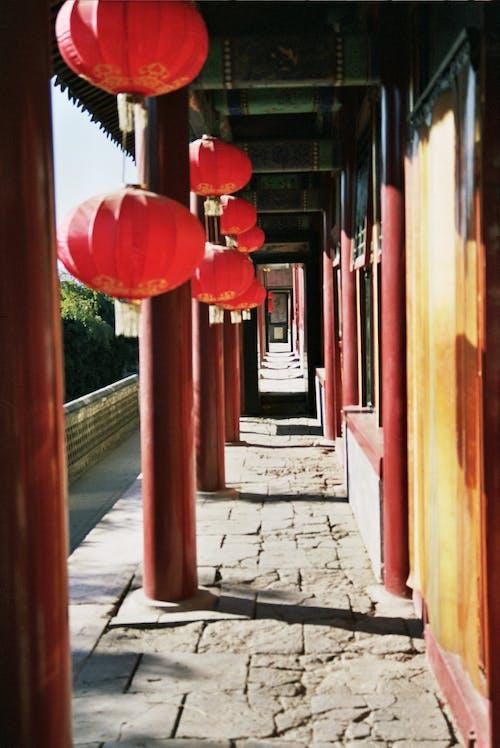 Fotos de stock gratuitas de arquitectura, camino, columnas, corredor