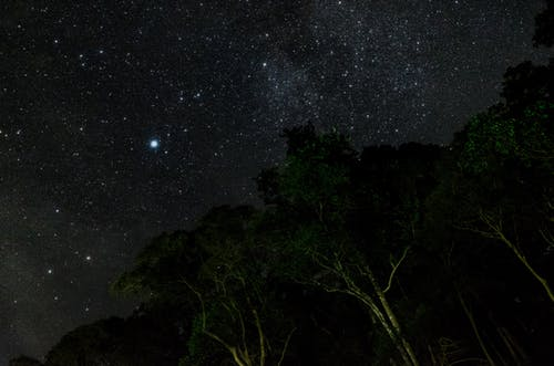 Free stock photo of forest, galaxy, milkyway, night sky