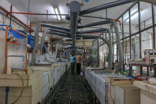 공장, 금속 작업, 선의 무료 스톡 사진