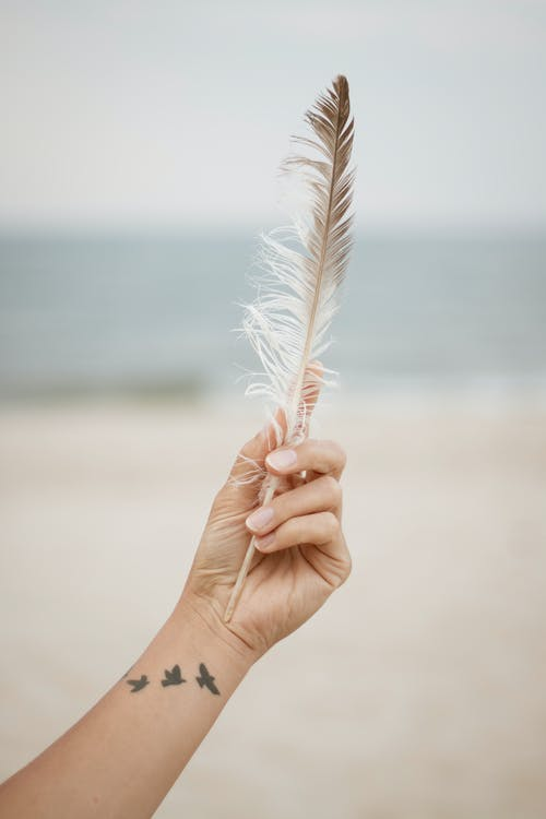 Person Holding a Feather