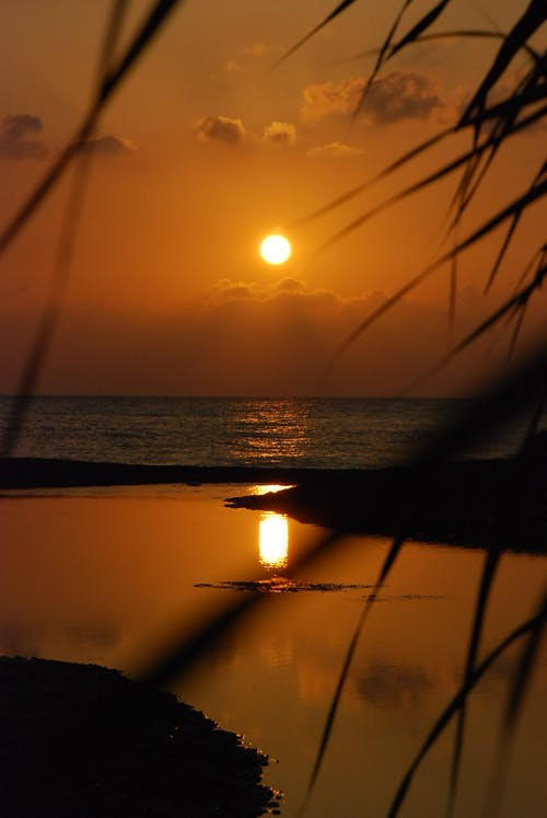 Foto profissional grátis de água, litoral, mar, olympos