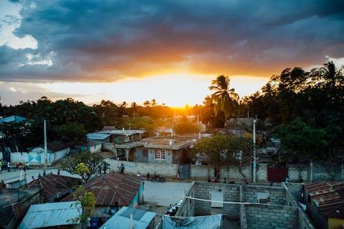 Foto Von Bäumen Und Häusern Während Der Goldenen Stunde