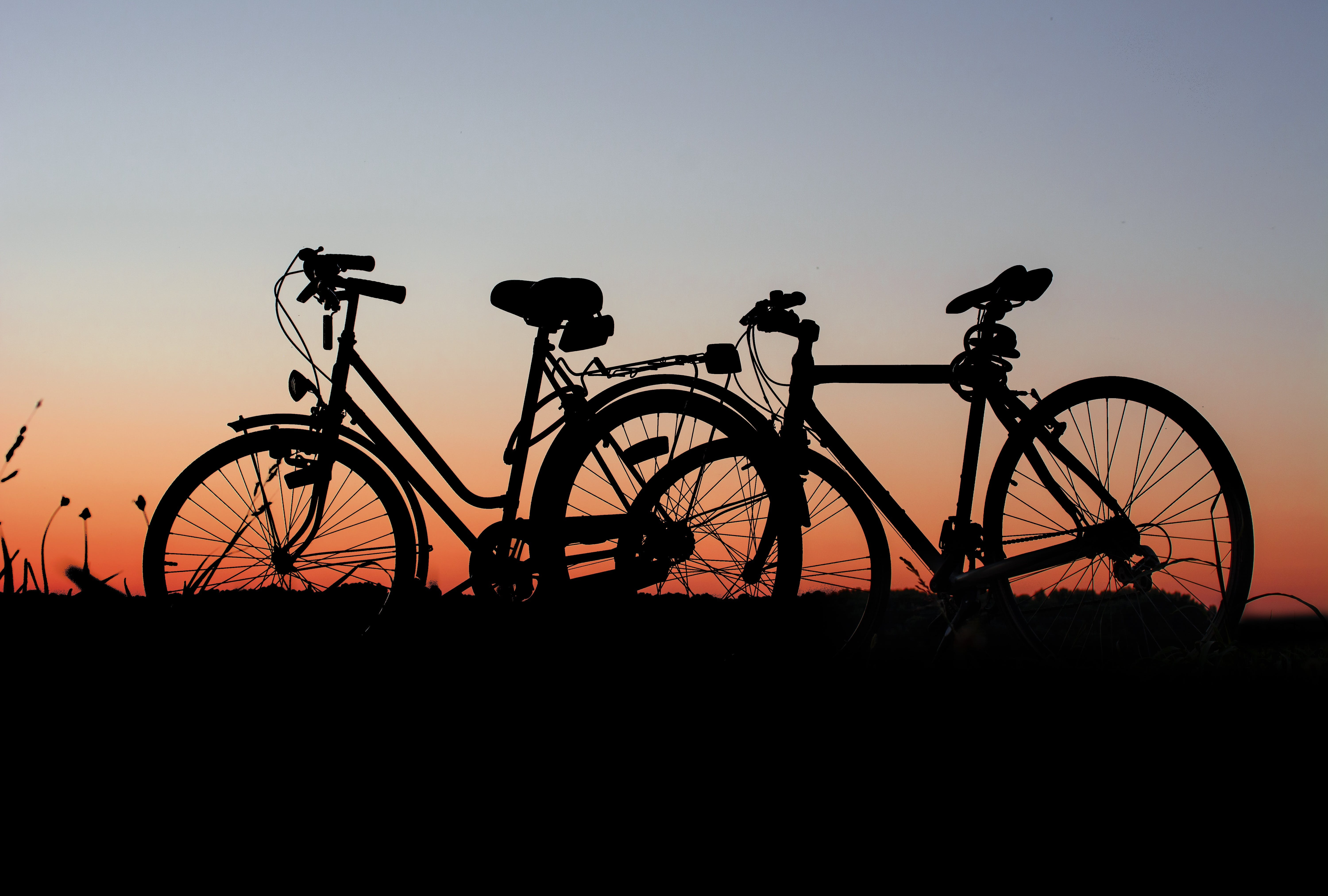 Silhouette of Bicycle on Grass