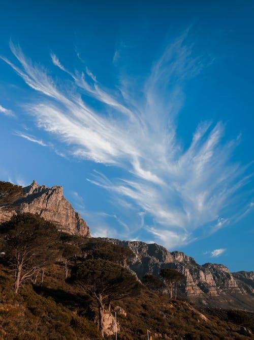 açık hava, ağaçlar, arazi, bulutlar içeren Ücretsiz stok fotoğraf