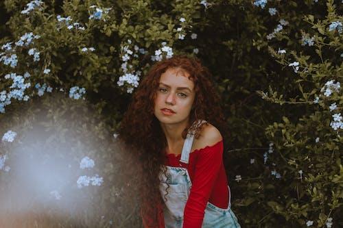 Photos gratuites de beauté, centrales, cheveux bouclés, cheveux roux