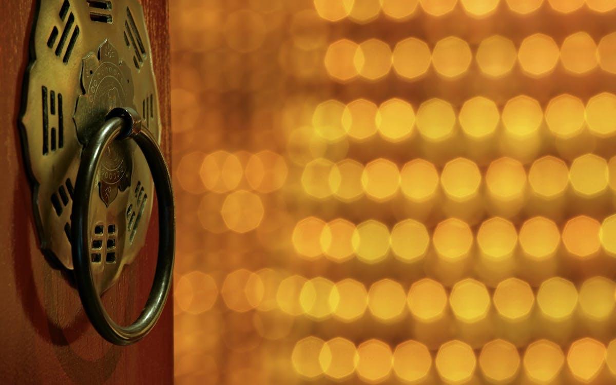 Brass Door Knocker in Bokeh Photography
