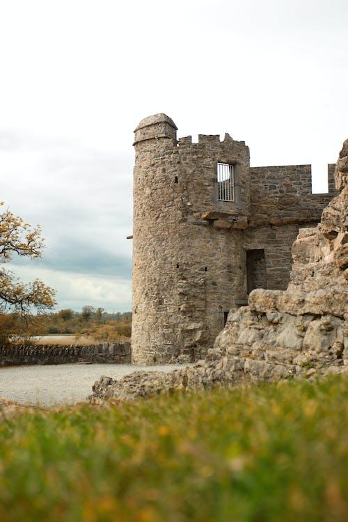 Gratis arkivbilde med europa, fjær, gammel, irland
