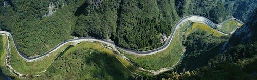 Immagine gratuita di alberi, ambiente, autostrada, curva