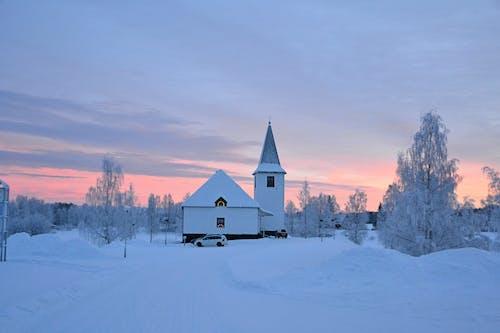 Immagine gratuita di alberi, auto, chiesa, cielo