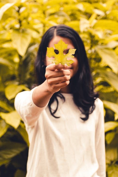 Photo of Person Holding a Leaf