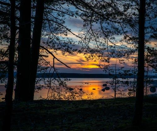 Kostnadsfri bild av landskap, sjö, solnedgång, träd