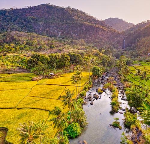 Fotobanka sbezplatnými fotkami na tému cestovať, dedinský, exteriéry, farma