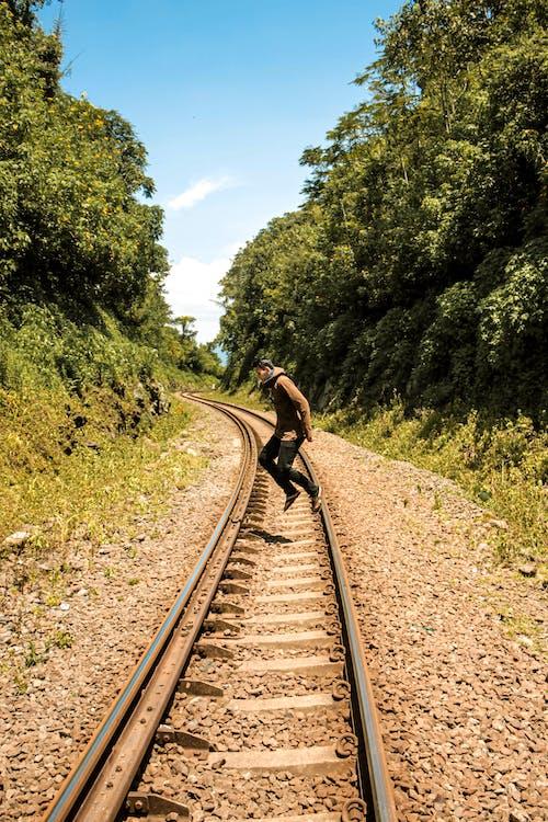 Photos gratuites de arbres, cailloux, chemin de fer, espace extérieur