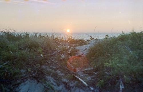 Безкоштовне стокове фото на тему «берег, берег моря, берег океану, біля океану»