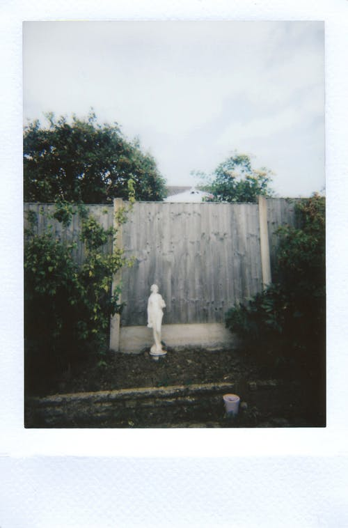 Statue Standing Near Fence
