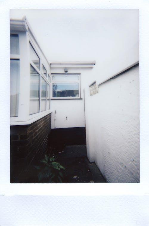 Gratis lagerfoto af gangbro, hvid, instant film, Polaroid