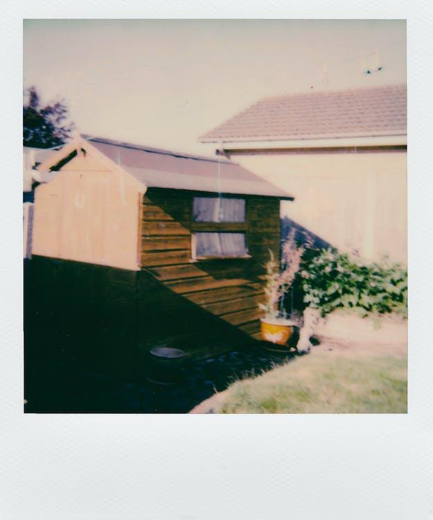 arkitektur, græs, instant film