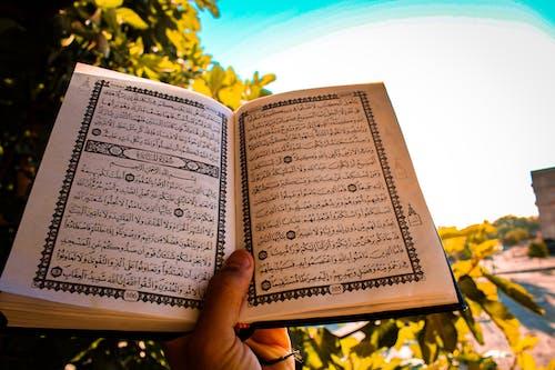 คลังภาพถ่ายฟรี ของ مصحف, มุสลิม, หนังสือ