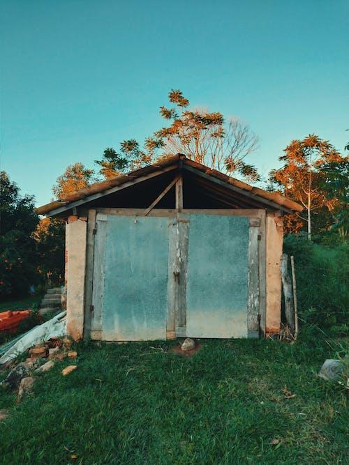 Photos gratuites de abandonné, abri de jardin, arbres, cailloux