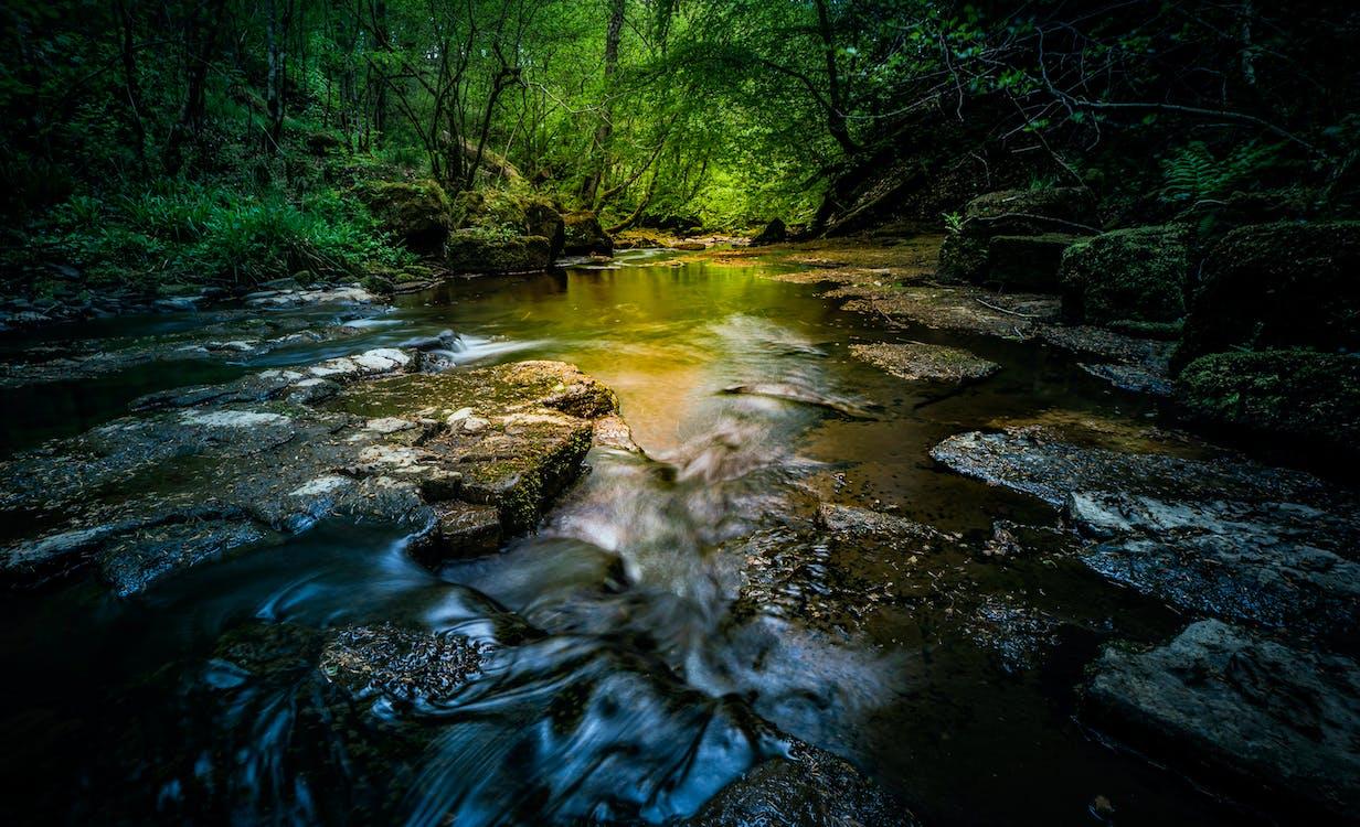 å, dagtimer, flod