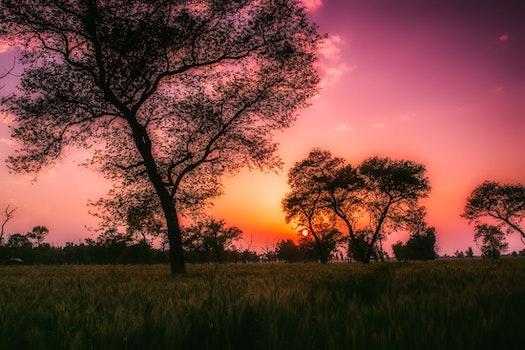 HD wallpaper of dawn, landscape, sunset, field