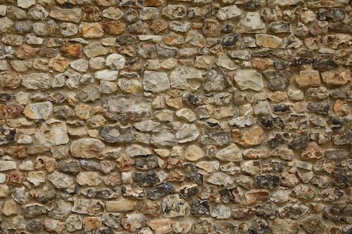 Foto profissional grátis de parede de ladrilhos, parede de tijolos