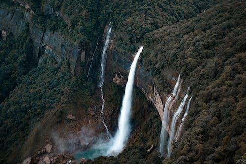 Foto d'estoc gratuïta de arbres, cascades, fotografia de natura, fotografia de paisatge