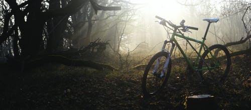 Free stock photo of bicycle, bike, forest, morning mist