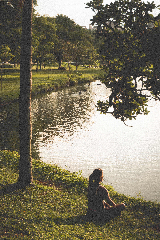 Kostenloses Stock Foto zu abenteuer, bäume, entspannung, erholung