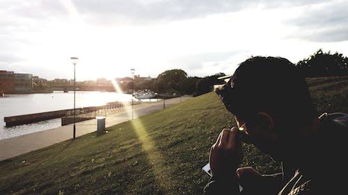 Foto d'estoc gratuïta de gent, herba, home, sol