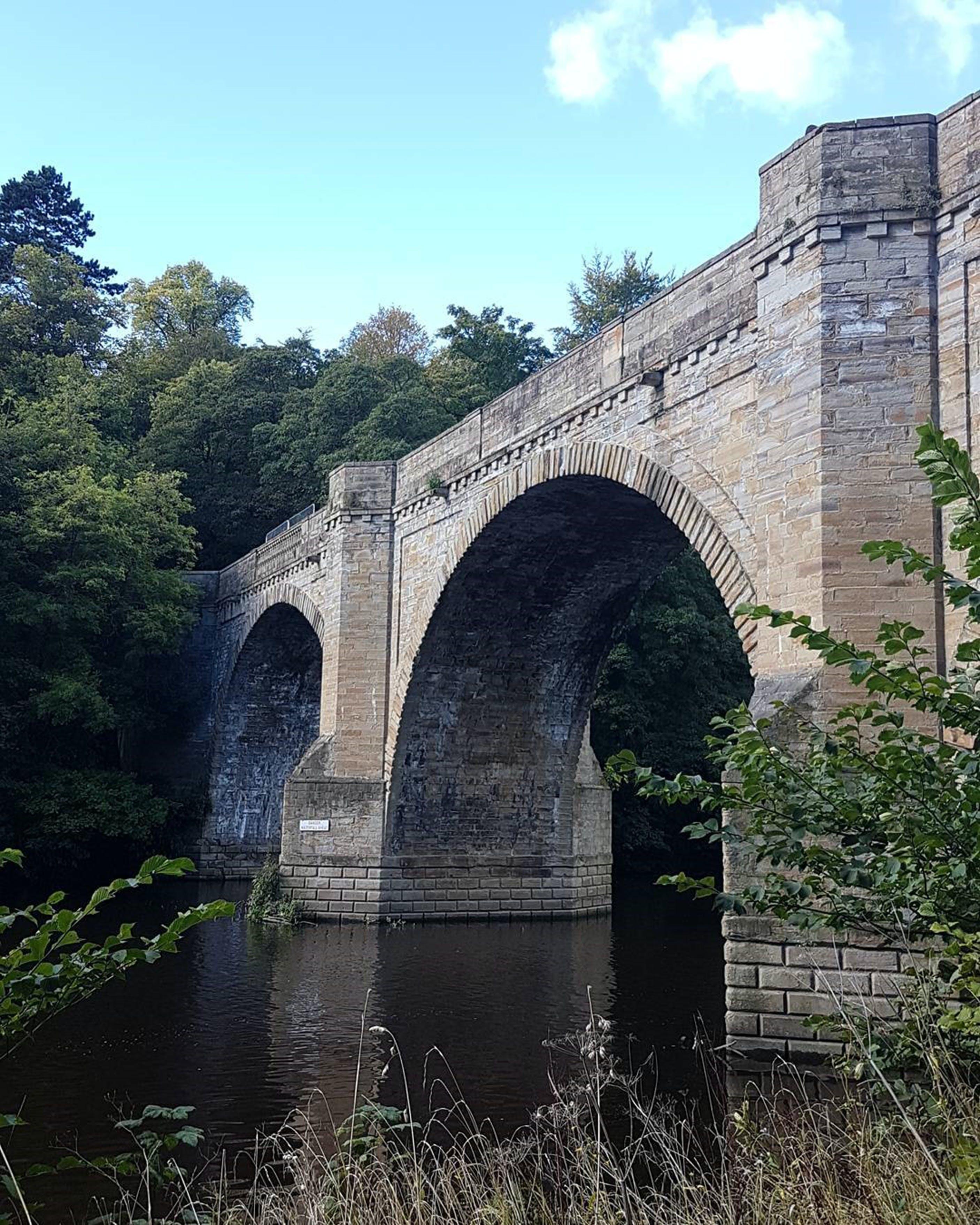 Free stock photo of bridge, building, construction, nature