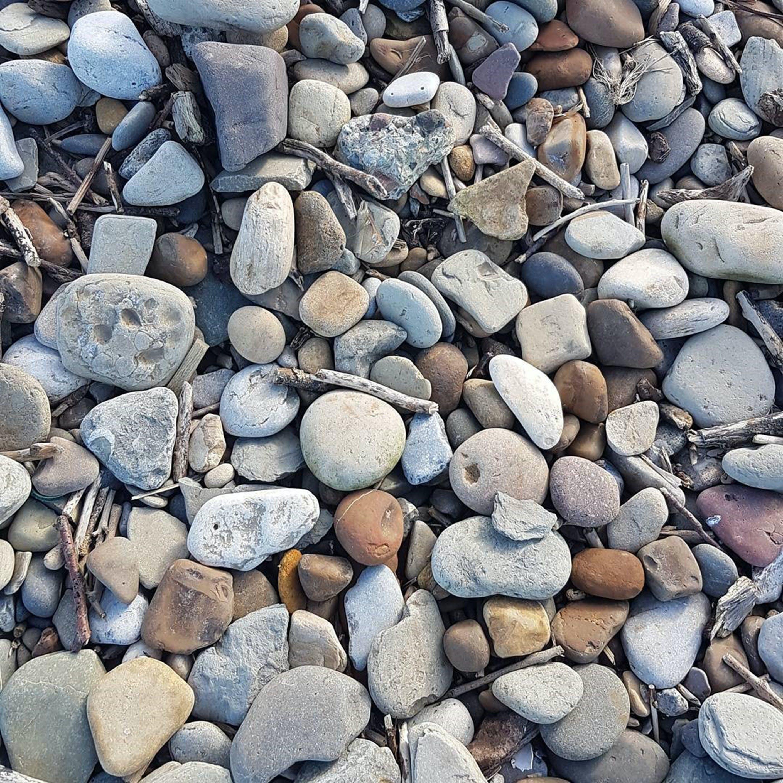 Free stock photo of beach, colors, rocks, sticks