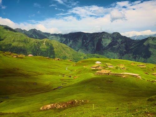 丘陵, 克什米爾, 增長, 夏天 的 免費圖庫相片