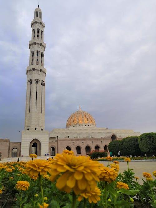 Základová fotografie zdarma na téma muscat, omán, velká mešita