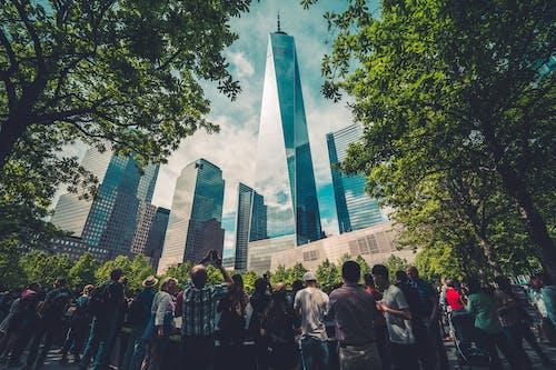 Immagine gratuita di 9/11, alberi, amministrazione, architettura
