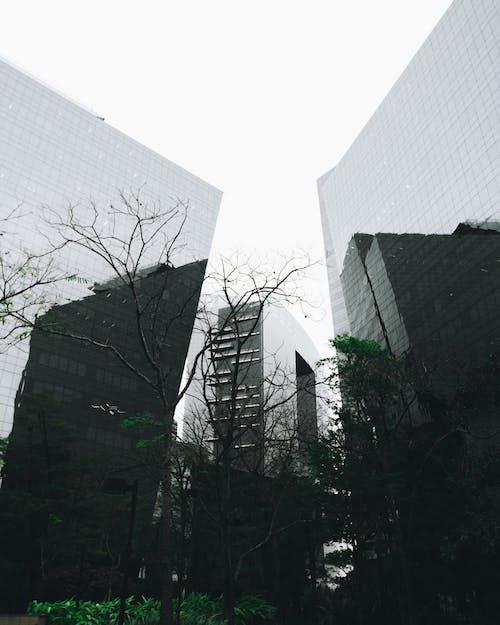 低角度拍攝, 地產, 外觀, 對比 的 免费素材照片