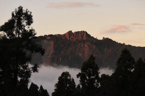Foto stok gratis kabut, matahari terbenam, pegunungan, taiwan