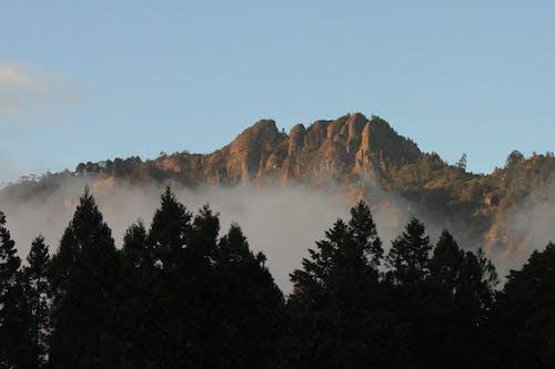 Бесплатное стоковое фото с горы, тайвань